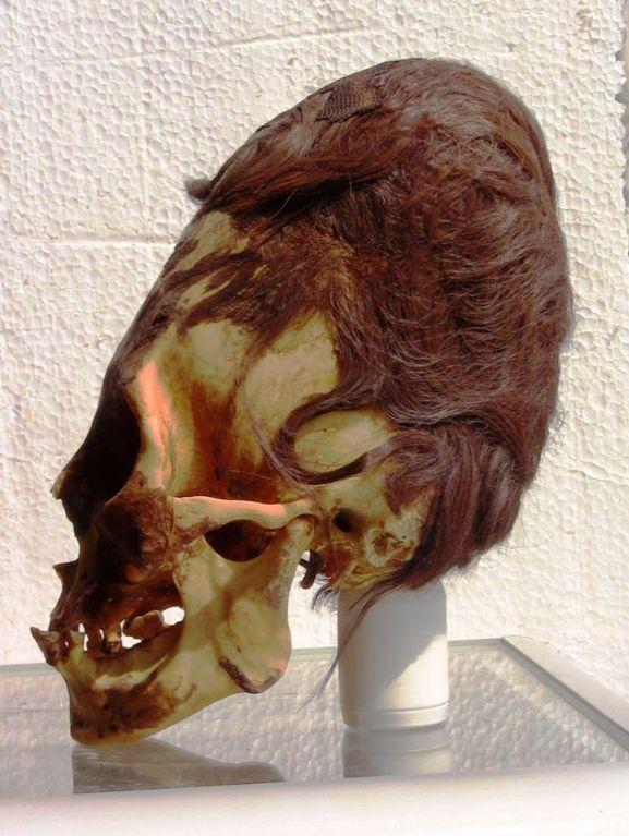 SkullParacasElongatedRed23