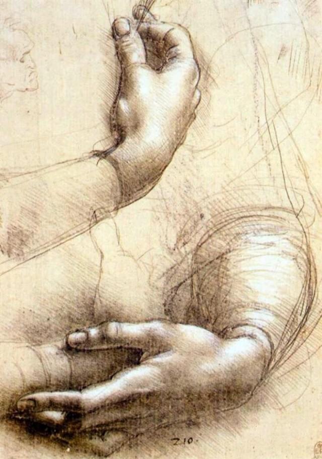 study_of_arm-hands-720x1027