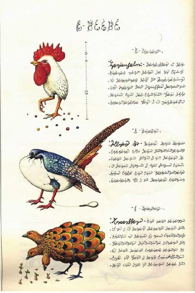 Codex-Seraphinianus-16