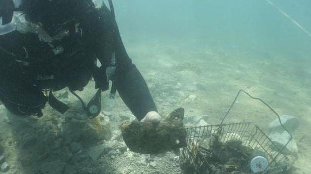 Pored Zadra pronađen grad pod morem star 3000 godina.  Gal