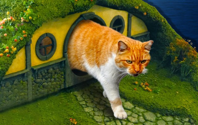 lord-of-the-rings-cat-liter-box-sauron-scrathing-post-superfan-builds-19