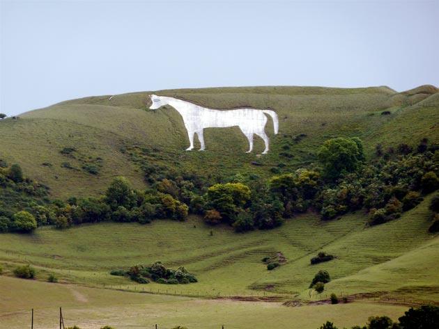 bijeli-konj