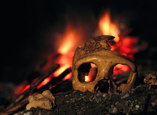 neanderthals-killed-by-volcanoes_26444_990x742