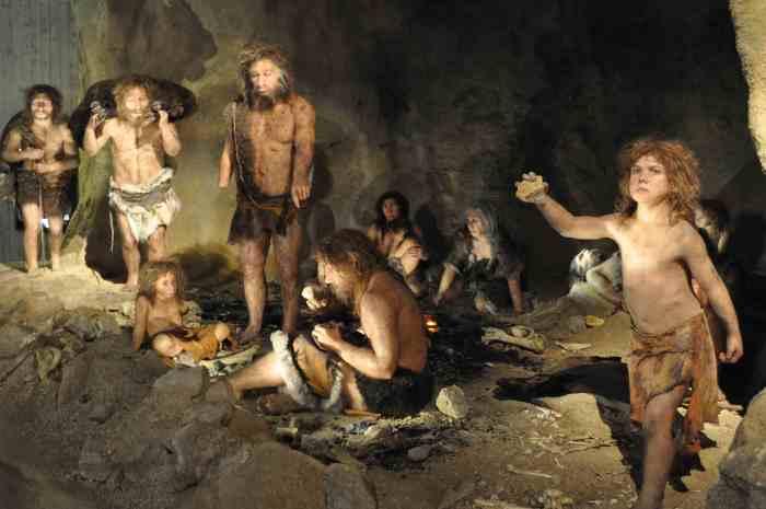 neanderthals53680s3